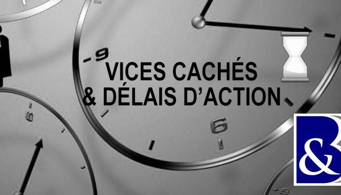 vices cachés prescription, délais action